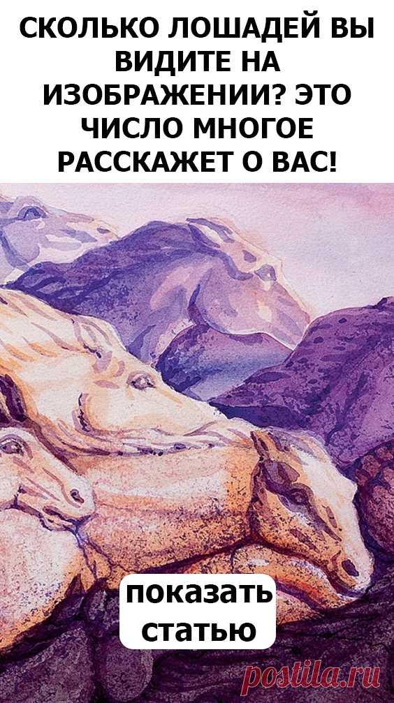 СМОТРИТЕ Сколько лошадей вы видите на изображении? Это число многое расскажет о вас!