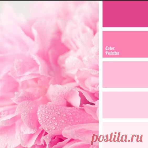 (25) Pinterest