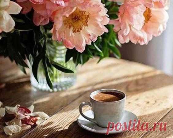 Утречко выдалось славное, Хочется вам пожелать: Мира, здоровья и — главное — Счастье свое не проспать!..