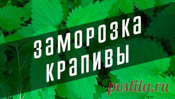 Как режу огурцы для заморозки на зиму - Яндекс.Видео
