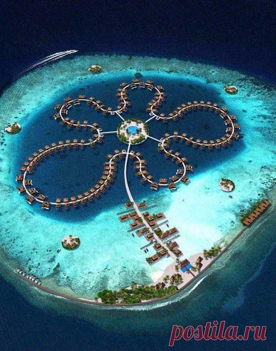Океанский цветок. Один из Мальдивских островов
