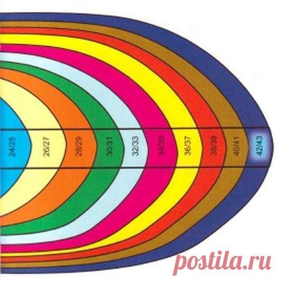 Общие правила вязания носков. Таблица размеров Сохрани себе   1. Размер Длина носка измеряется в сантиметрах и рассчитывается следующим образом: размер ноги нужно разделить на 3 и умножить на 2 = длина ступни в сантиметрах. Пример: 42 : 3 х 2 = 28, т. е. размеру обуви 42 соответствует длина ступни 28 см. 2. Стенка пятки Стенку пятки вязать на половине набранных петель, т. е. петли 2-й и 3-й спиц отложить, на петлях 1-й и 4-й спиц вязать лиц. гладью или по инструкции число ...
