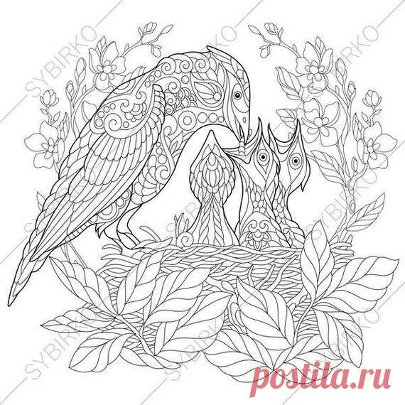 Jay Bird Nest 2 Coloring Pages For Mother S Day Greeting
