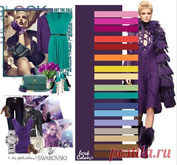 ТЕМНО-ВИНОГРАДНЫЙ цвет (правильное сочетание цветов в одежде)  Сочетайте темно-виноградный с розовым, маджентой, фуксией, красно-оранжевым, темно-красным, абрикосовым, желто-зеленым, бледно-желтым, светло-зеленым, ярко-изумрудным, серо-синим, голубым, сиреневым, нейтрально-бежевым, желто-бежевым, светло-коричневым, коричневым цветами.