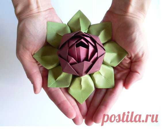 8a14ad0c3c61 Цветы лотоса из бумаги в технике оригами. ВИДЕО Мастер-класс | цветы ...