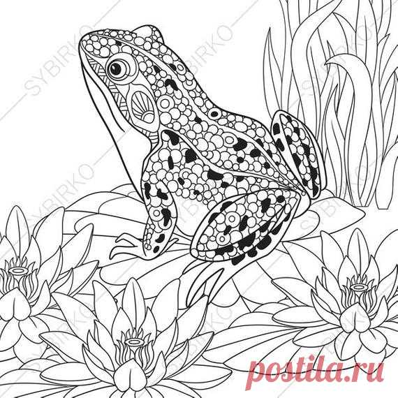 Frog 2 Coloring Pages Animal Coloring Book Pages For