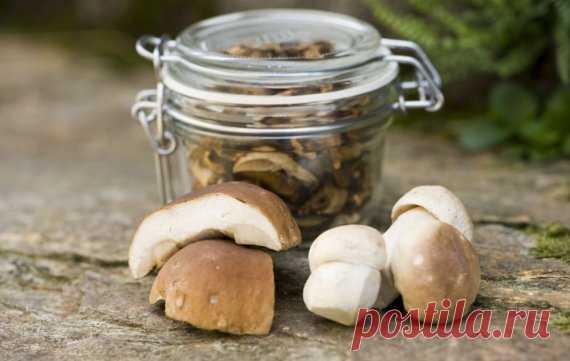 Baravykų – lyg iš gausybės rago: 14 receptų su karališkaisiais grybais   Maistas   15min.lt