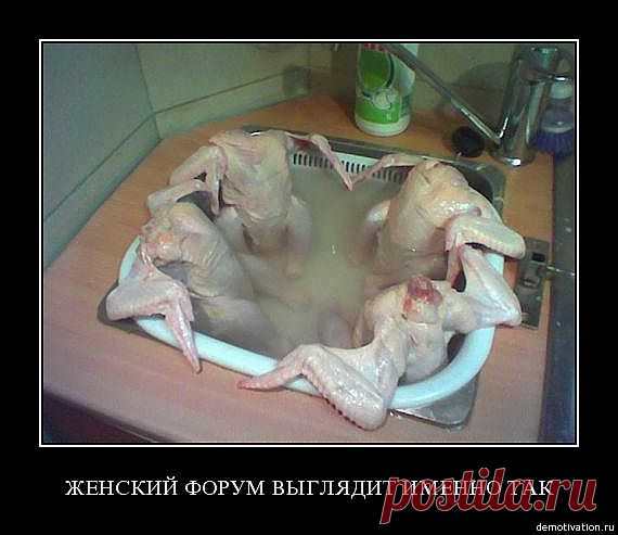 шутка на кулинарную тему   Don Аппетит