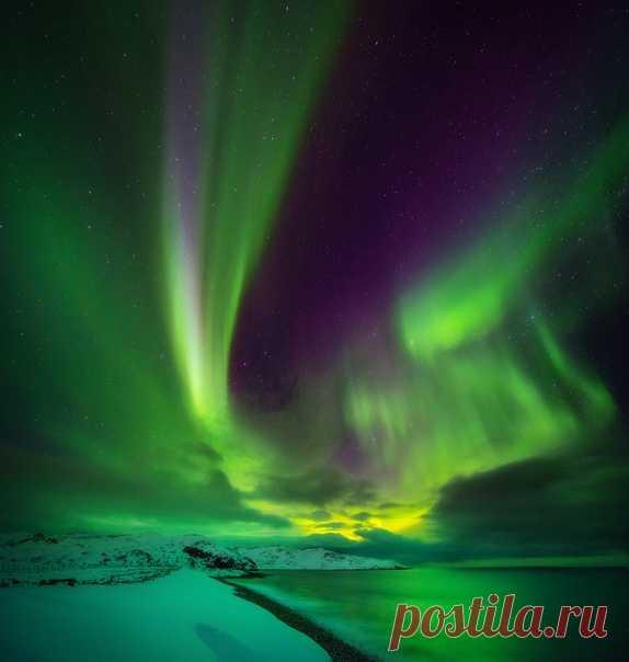 50 оттенков зеленого на снимке полярного сияния от Елены Ермолиной. Изумрудных снов 🌌