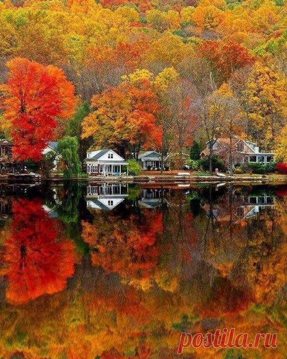 ¡Los tintes brillantes del otoño! Los EEUU