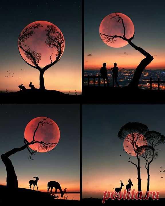 Вечерний фото-арт ❤️ Какая фотография вам больше понравилась? Photo: Abdullah Evindar