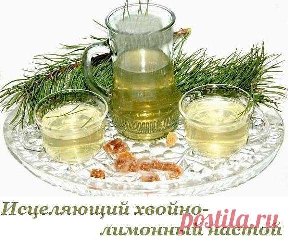 Исцеляющий хвойно-лимонный настой для укрепления иммунной системы | Всегда в форме!