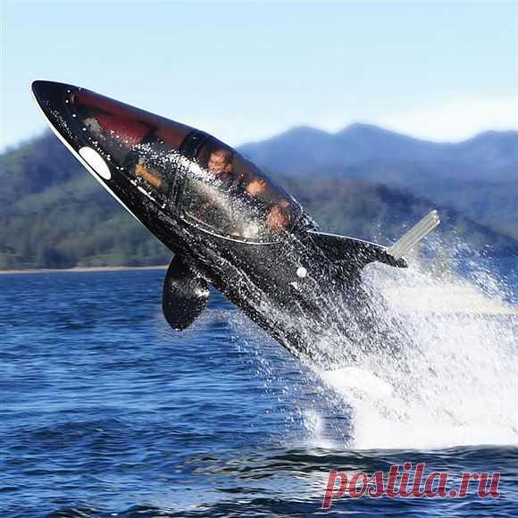 Подводный скутер за $100 000 (3 фото + видео) - Hi-Tech <!--if()-->- <!--endif--> - Главная - Утканос