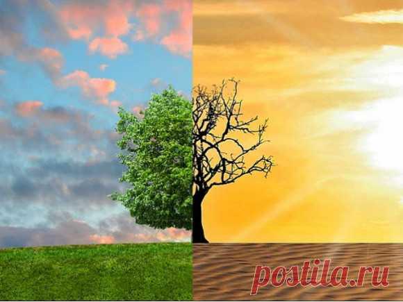 Землю ждут страшные климатические катаклизмы и массовое переселение людей Человеческой цивилизации скоро наступит конец из-за изменения климата, бездействия правительств и последующего социального и экономического кризиса. К