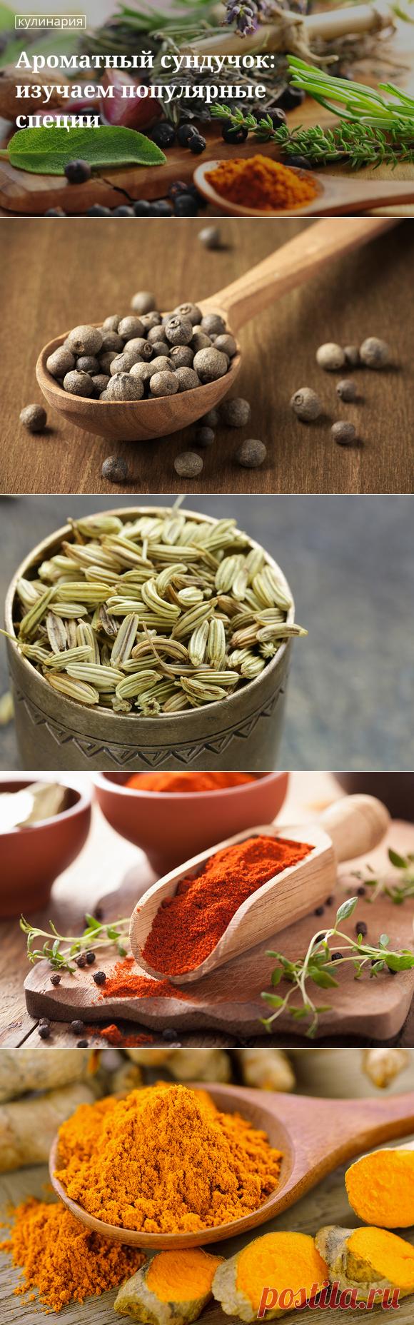 Гид по специям: какие ароматные приправы к каким блюдам подходят