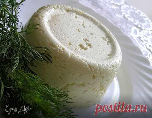 Cottage Adygei cheese. Ingredients: milk, cottage cheese, eggs   Official site of culinary recipes of Yulia Vysotskaya