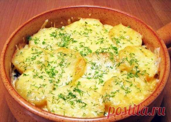 Запеканка с грибами и картофелем. Хватит готовить банальные блюда!