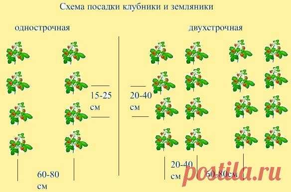 Uh8UVbMgmMo.jpg (584×386)