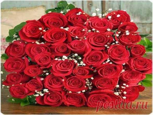 Поздравления с днем рождения саиде