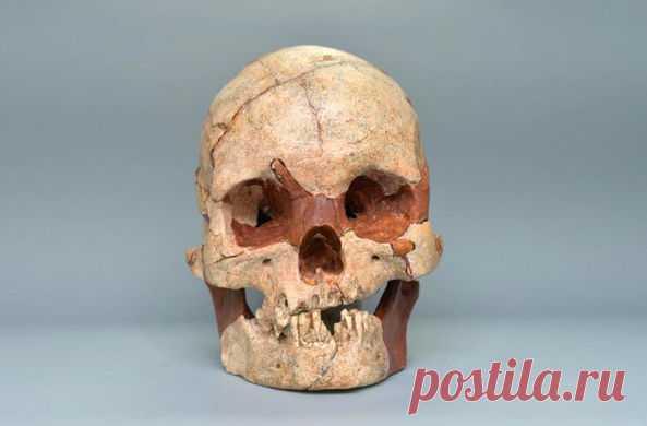 Это первый полный череп такого возраста, обнаруженный в Китае. Рядом с ним нашли тысячи других артефактов
