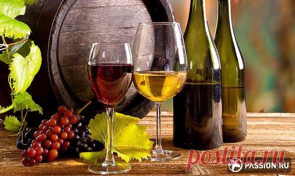 Как правильно пить вино | passion.ru