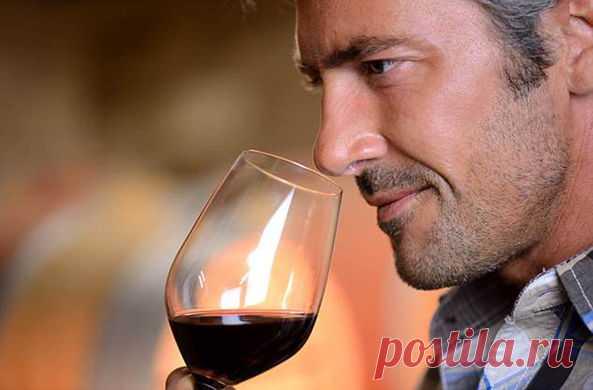 Доктор Майкл Мосли поясняет, от каких болезней спасает вино