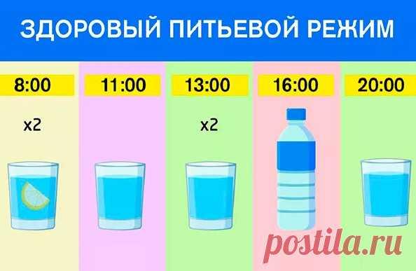 График для худеющих: ешь что хочешь и пей воду по часам. Результат — минус 15 % жира! Красота и похудение в домашних условиях График для худеющих: ешь что хочешь и пей воду по часам. Результат — минус 15% жира! Плохое самочувствие и головные боли мы объясняем усталостью и проблемами на работе, запиваем таблетками, заедаем вкусностями, когда нужно просто выпить стакан обычной воды. Да, многих это... Читай дальше на сайте. Жми подробнее ➡