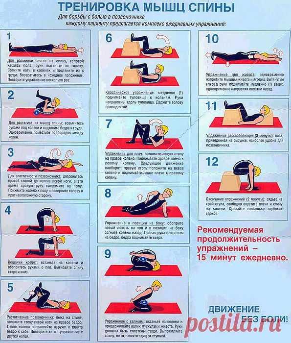 Как тренировать мышцы спины.