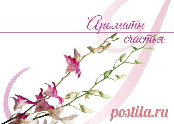 Выход весеннего номера журнала «Ароматы счастья»   Блог Ирины Зайцевой