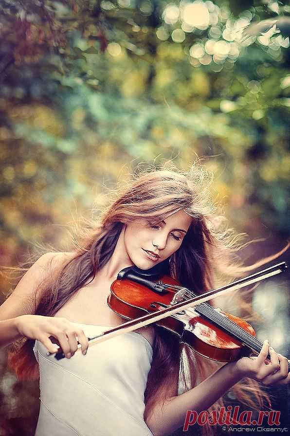 Фотосет со скрипкой: душа в клочья