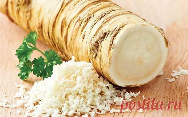 Заготовки из хрена на зиму: золотые рецепты в домашних условиях, маринование и консервирование
