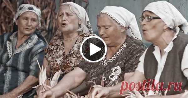 Молдавские фермеры сняли видеоклип, в котором перепели песню Queen «Show Must Go On» 🎶 И сделали это невероятно душевно! 🎤 🎵