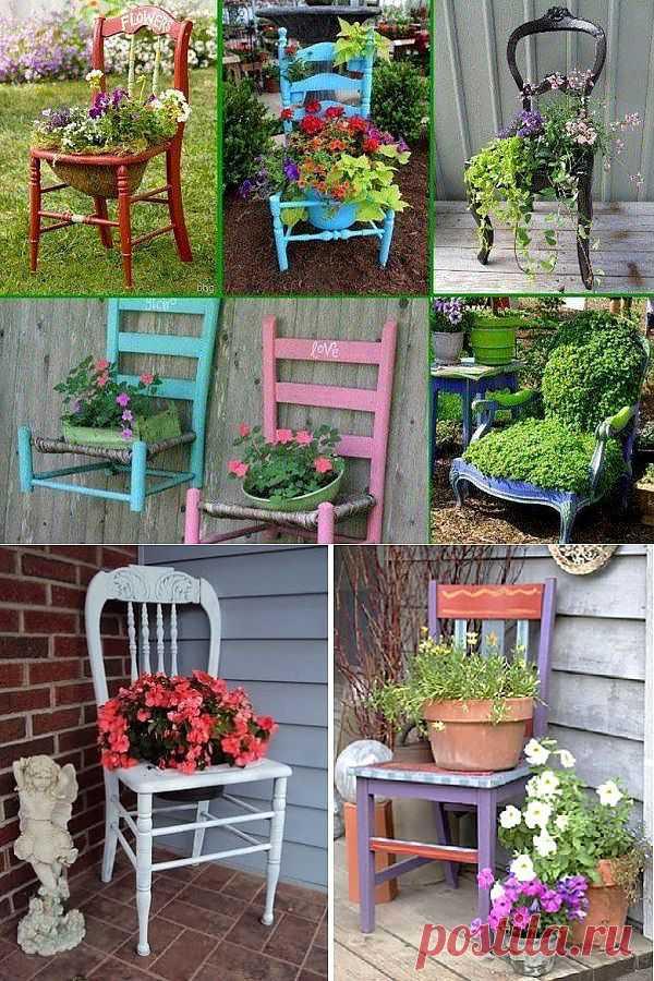 Идеи применения старых стульчиков на вашей даче