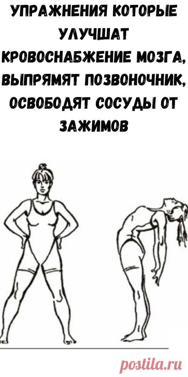 Упражнения которые улучшат кровоснабжение мозга, выпрямят позвоночник, освободят сосуды от зажимов - Стильные советы