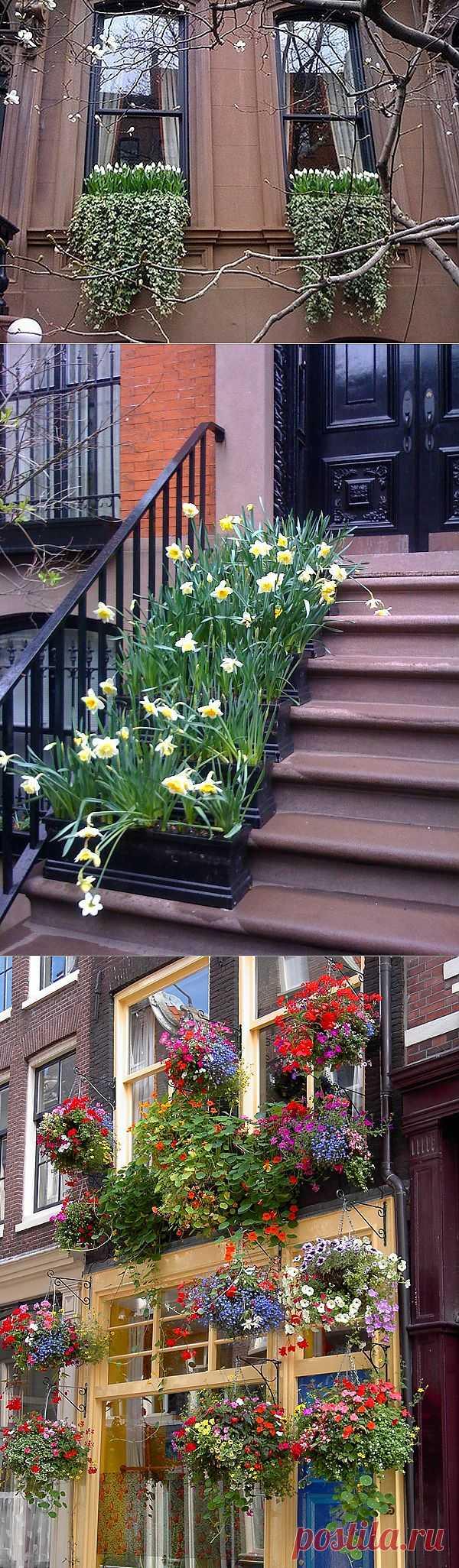 Ребята, давайте сделаем весну за окном!