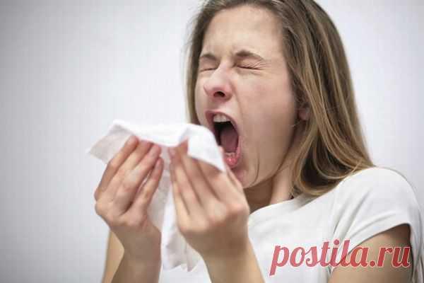 Почему когда человек чихает, мы говорим «Будь здоров!», а когда кашляет — нет? . Милая Я
