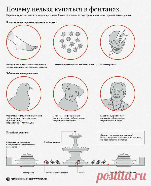 Почему нельзя купаться в фонтанах | РИА Новости