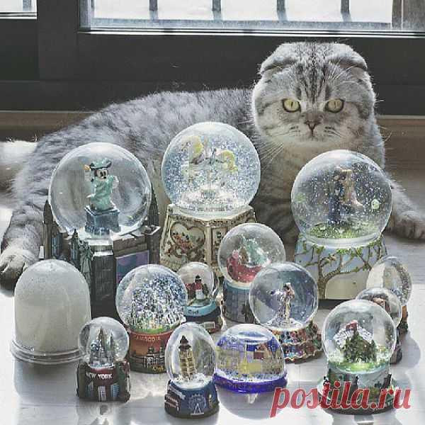 Хранитель стекленных шаров --  Все темы | Kote.Rjaka.com