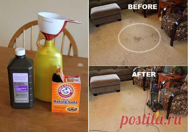 Ингредиенты для чистки ковров | www.FabArtDIY.com