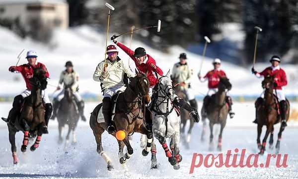 Lenta.ru: Спорт: Другие зимние: Здесь тепло, а у вас все в снегу