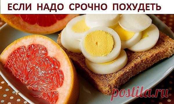 Яичная диета - Рецепты