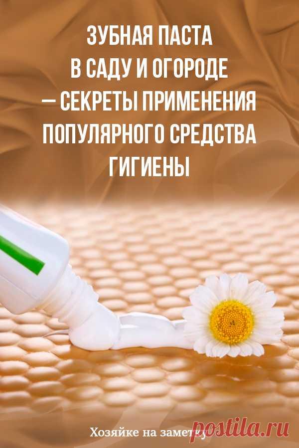 Зубная паста в саду и огороде – секреты применения популярного средства гигиены