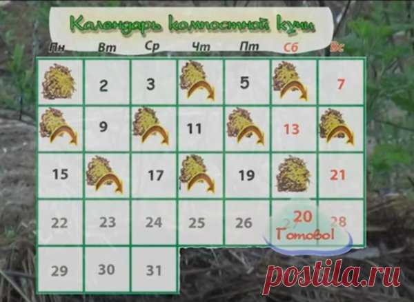 Быстрый компост за 20 дней | Пчеловед | Яндекс Дзен