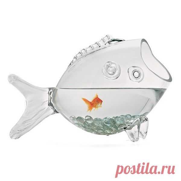 Забавный аквариум для золотой рыбки. $70 USD. Мне даже рыбку захотелось завести. Интересно, владельцы рыбок поделитесь, у Вас какие аквариумы?