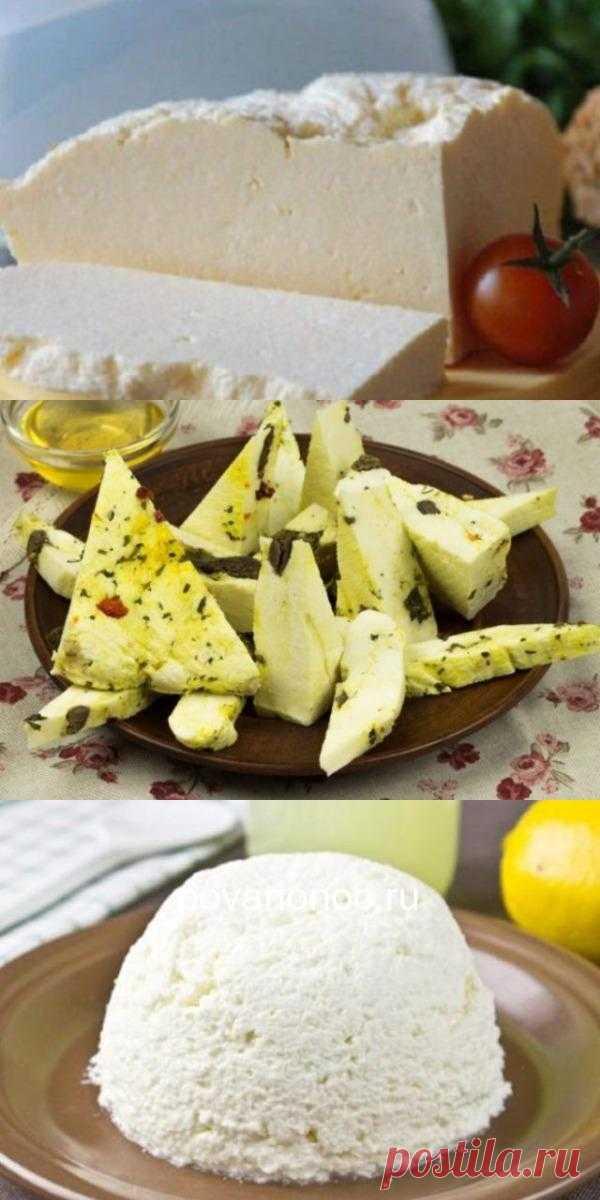 8 рецептов домашнего сыра.