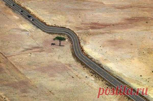 Подборка фотографий, которые показывают уважение к природе