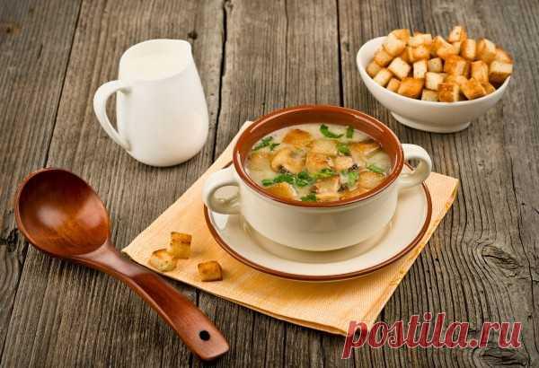 (+1) Крем суп из шампиньонов – рецепты приготовления
