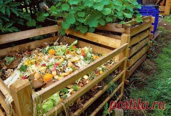 Как ускорить созревание компоста | садоёж | Яндекс Дзен