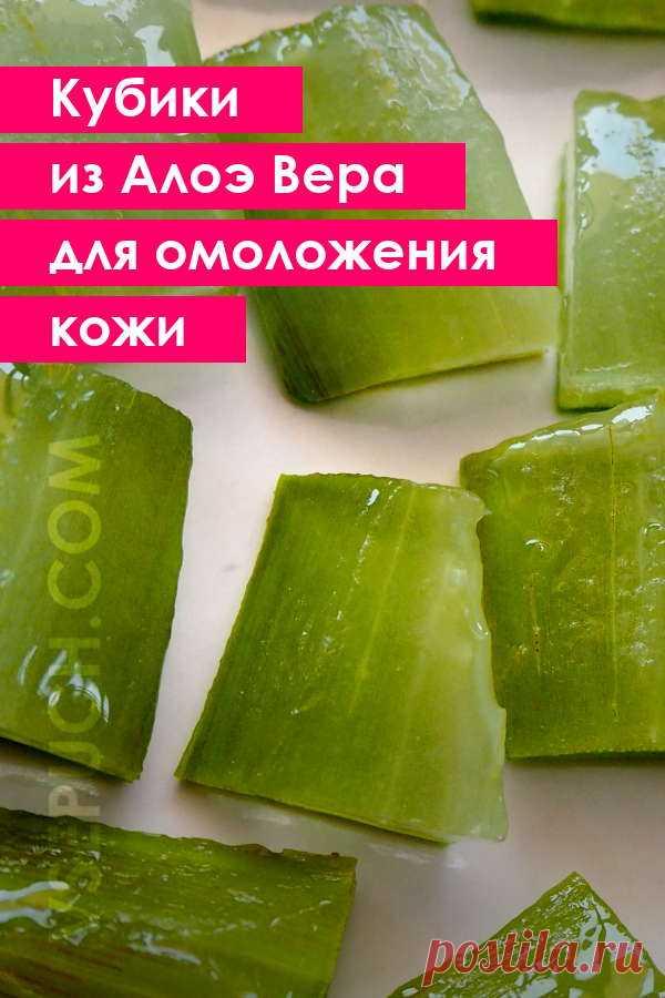Замороженные кубики из Алоэ Вера для омоложения кожи #алоэ #омоложение #кожалица #домашняякосметика #косметическийлед