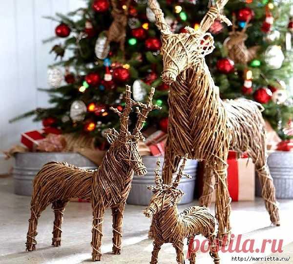 Веточки деревьев для рождественского декора.